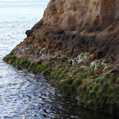 历经漫长岁月,被波浪磨削而成的美丽而神秘的岩面